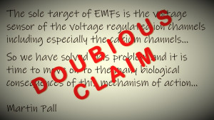 Cautionary words on Martin Pall's claim that VGCC is the sole target and mechanism for all EMF effects, Smombie Gate | 5G | EMF