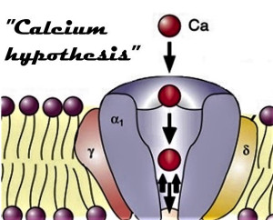 """Henry Lai: cautionary words on """"calcium hypothesis"""" in the science of EMF, Smombie Gate 